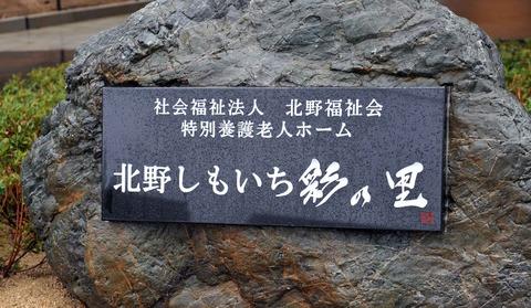 iro_20110321_014_shige